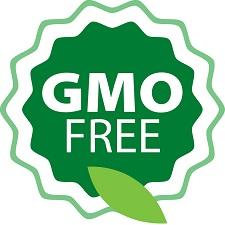 GMO-mentes